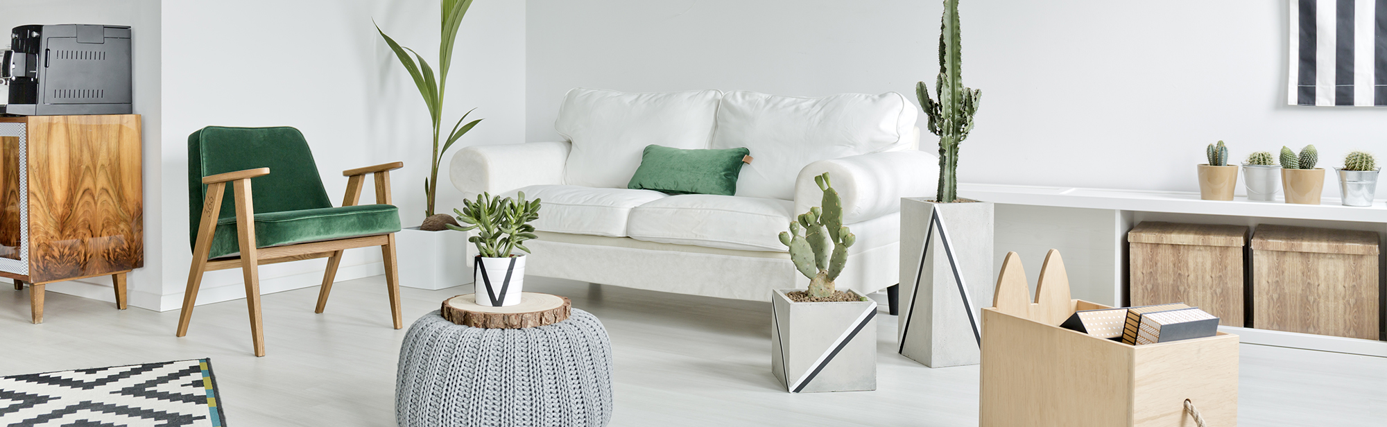 living room with plants PKL8S67